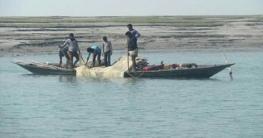 করোনার মধ্যেও চারঘাটে চলছে নিষিদ্ধ জালে মাছ শিকার