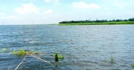 বাগমারায় বন্যার পানিতে ভেসে গেছে আট কোটি টাকার মাছ