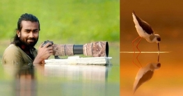 আন্তর্জাতিক আলোকচিত্র প্রতিযোগিতায় সেরা রাজশাহীর হিমেলের ছবি