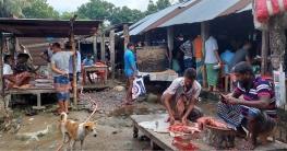 দুর্গাপুরে অস্বাস্থ্যকর পরিবেশে মাছ-মাংসের হাট