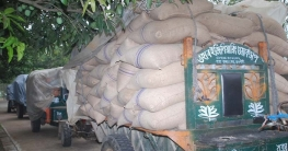গোদাগাড়ী খাদ্যগুদামে ঢোকানোর আগে ব্যবসায়ীর ৪০০ বস্তা গম জব্দ