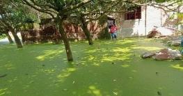গোদাগাড়ীতে নালা দখল করে নেওয়ায় পানিবন্দী ৩০ পরিবার