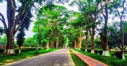 ৩০ হাজার বৃক্ষরাজিতে শোভিত রাবি ক্যাম্পাস