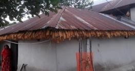 তানোরে ভুট্টা দিয়ে সাজানো কৃষকের বাড়ি নজর কাড়ছে পথচারীদের