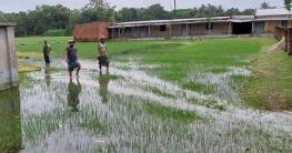 ভারী বর্ষণে দুর্গাপুরে স্কুল-কলেজে হাঁটুপানি