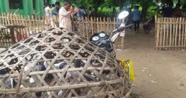 কেশরহাটে জমজমাট কবুতরের হাট