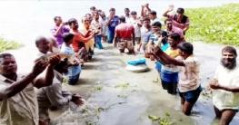 বাগমারায় জোঁকা বিলে নতুন ভাবে মাছ চাষের উদ্বোধন