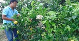 কর্মহীনদের গ্রামে রাখতে ৭ হাজার কোটি টাকার প্রকল্প